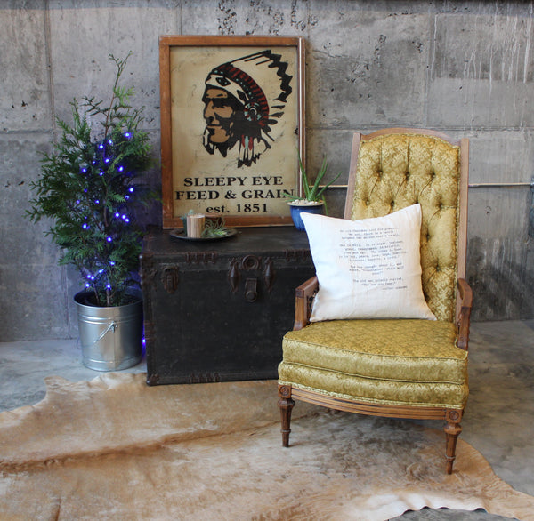 vintage chair with trunk and cowhide