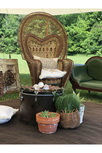 Big Kahuna Peacock Chair - Event Rental Gypsy Jule