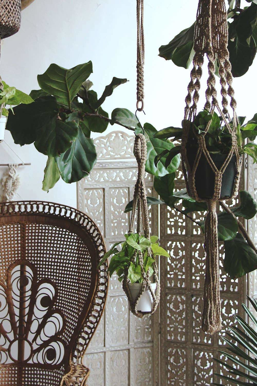 Soul of the Party - Macrame Plant Hanger Soul of the Party