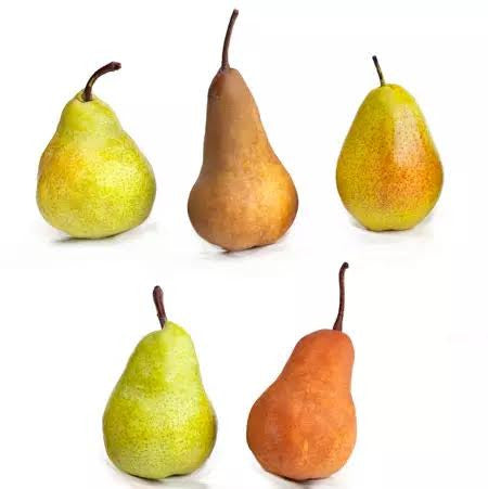 Pear, 5-in-1 Eating (Container)