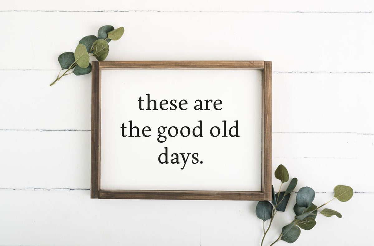 These Are The Good Old Days 12 x 16 Framed Sign