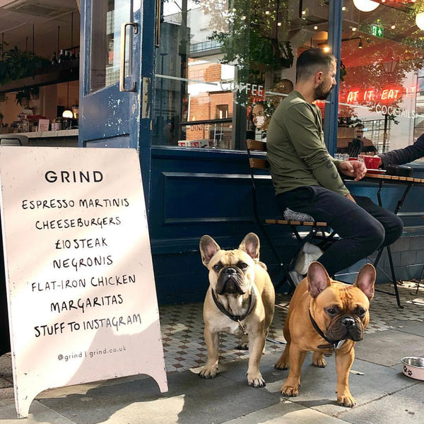 Two french bulldogs outside Exmouth Market Grind restaurant with pink a-board