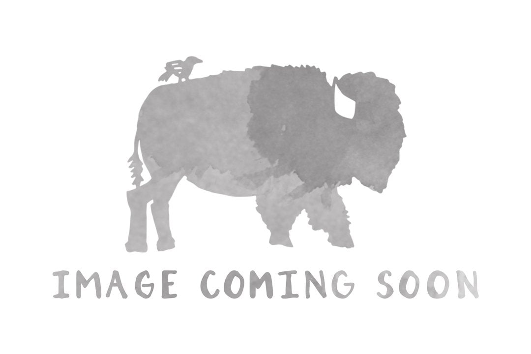Greeting Card - Bison - Bird and Buffalo, Made in Jackson Hole, WY
