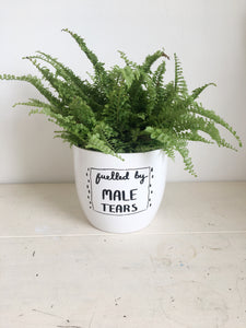 Fuelled by Male Tears Hand Illustrated Ceramic Planter