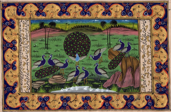 Indo Persian Bird Art Handmade Miniature Illuminated Manuscript Islamic Painting