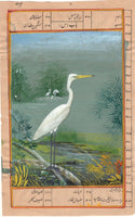 India Miniature Painting Handmade Painted Egret Bird Watercolor Wild Life Art