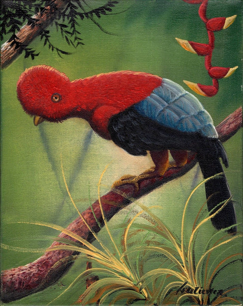 Peru Andean Cock of the Rock Painting Handmade South American Nature Bird Art