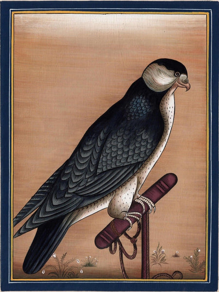 Indian Falcon Miniature Art Handmade Bird of Prey Miniature Cotton Painting