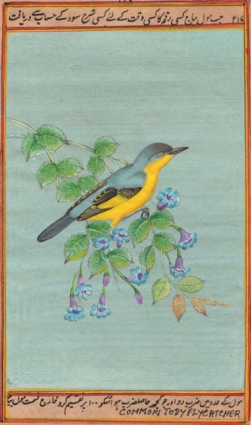 Common Tody Flycatcher Bird Art Rare Handmade Indian Miniature Nature Painting