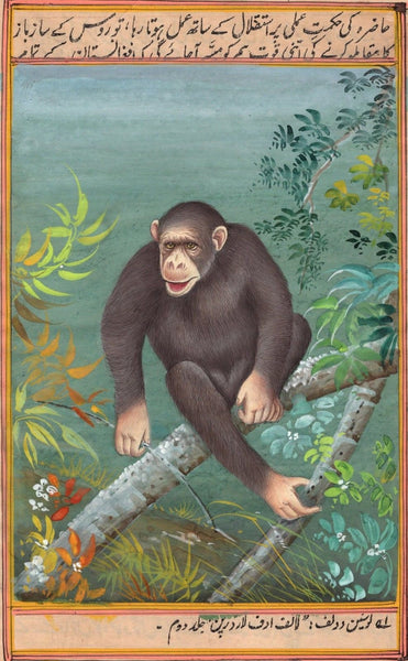 Chimpanzee Animal Painting Handmade Indian Miniature Watercolor Wild Life Art