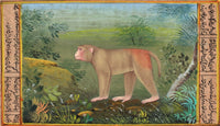 Indian Miniature Art Handmade Assam Macaque Monkey Watercolor Nature Painting