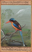 Paradise Kingfisher Bird Painting Handmade Wild Feathered Indian Miniature Art