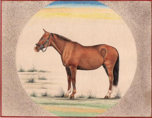 Marwari Horse Art