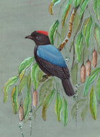Blue Backed Manakin Bird Painting Handmade Indian Miniature Nature Decor Art