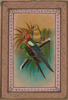 Parrot Painting Handmade Indian Bird of Paradise Nature Floral Miniature Art