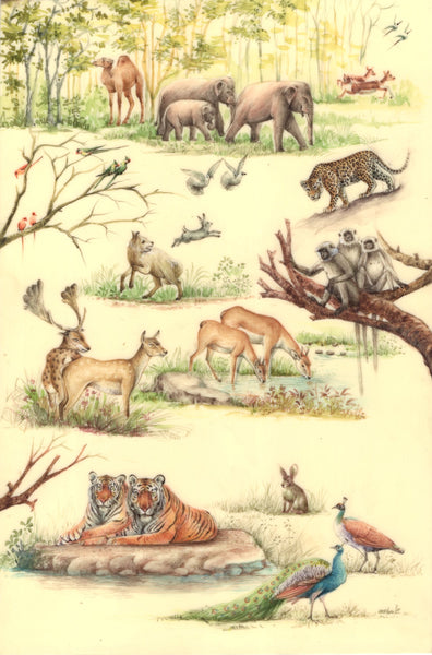 Indian Wildlife Artwork