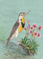 Eastern Meadowlark Bird Painting