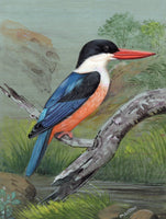 Kingfisher Art