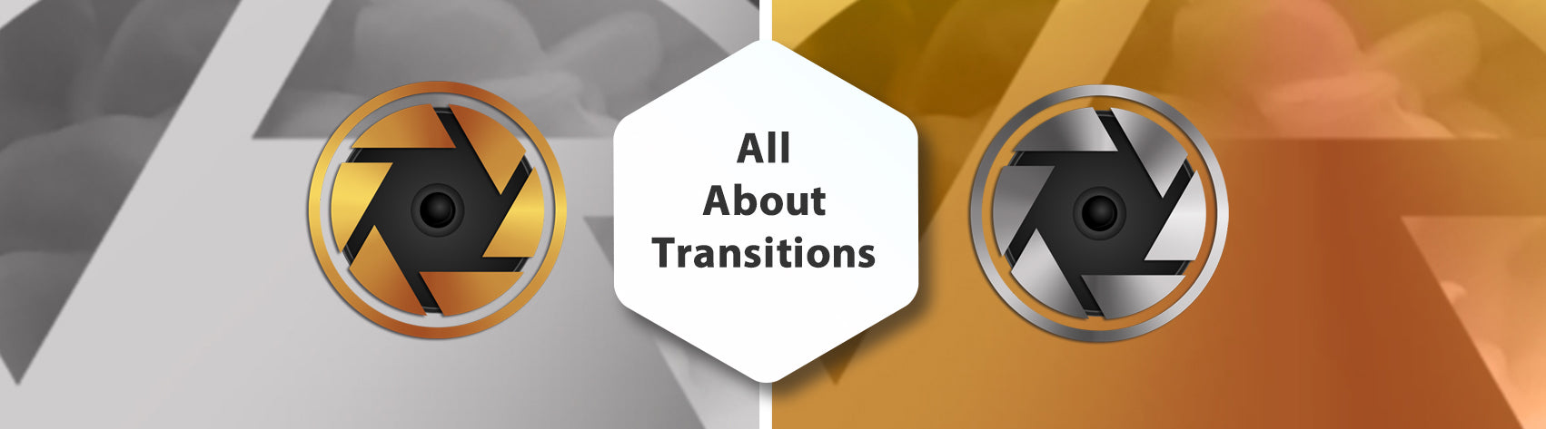 All About Transitions in Photopia