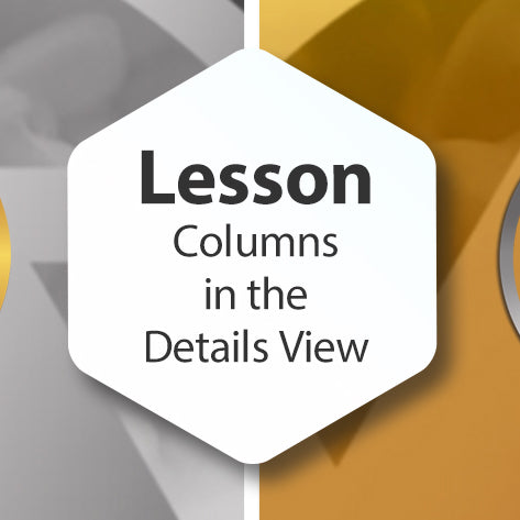 Lesson - Columns in the Details View
