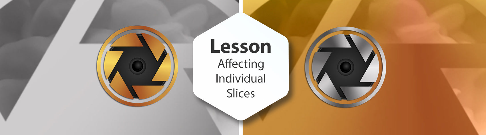 Lesson - Affecting Individual Slices (Director Only)