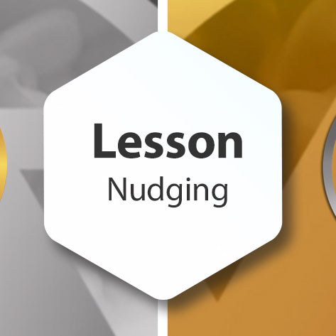 Photopia Lesson - Nudging