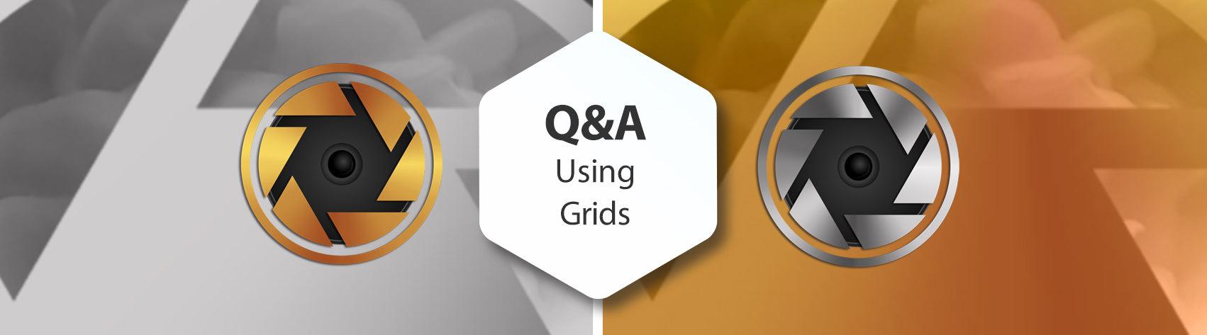 Q&A Using Grids