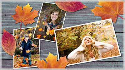 Colorful Leaves Style Pack