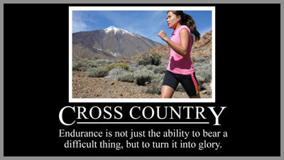 Cross Country Motivational Style