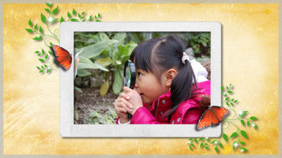 Orange Butterfly Frame