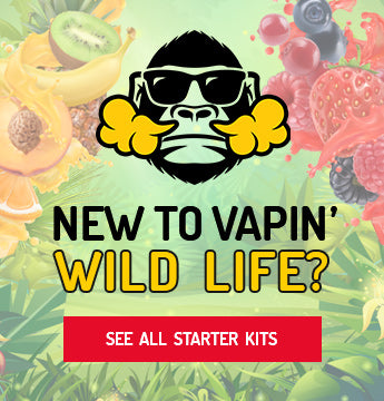 new to vapin' starter kits