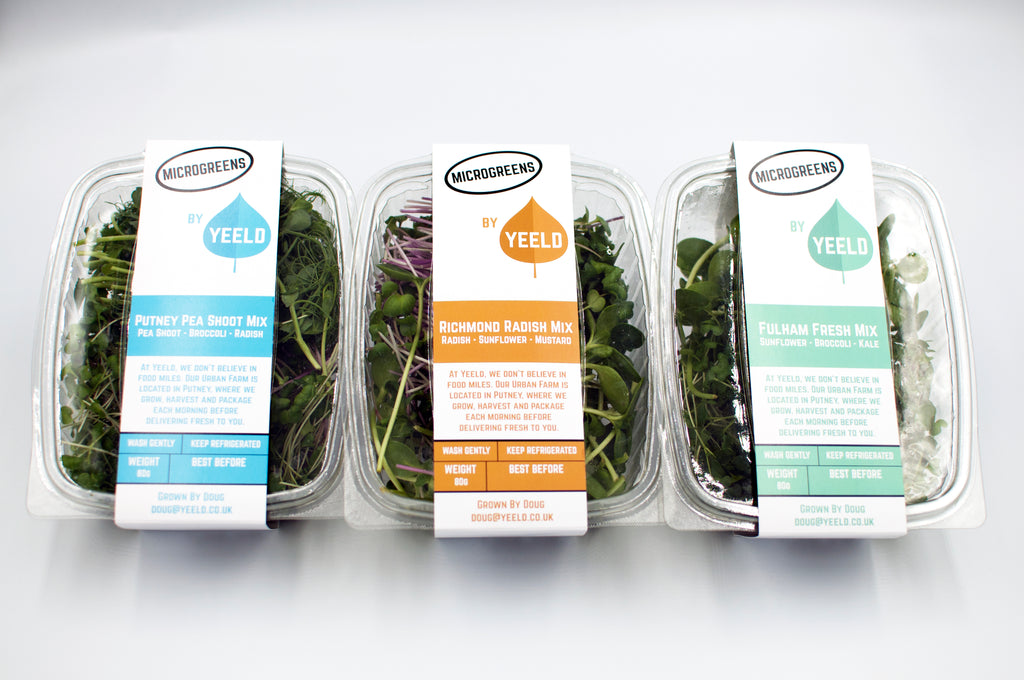 x3 80g Microgreen Mixes by Yeeld