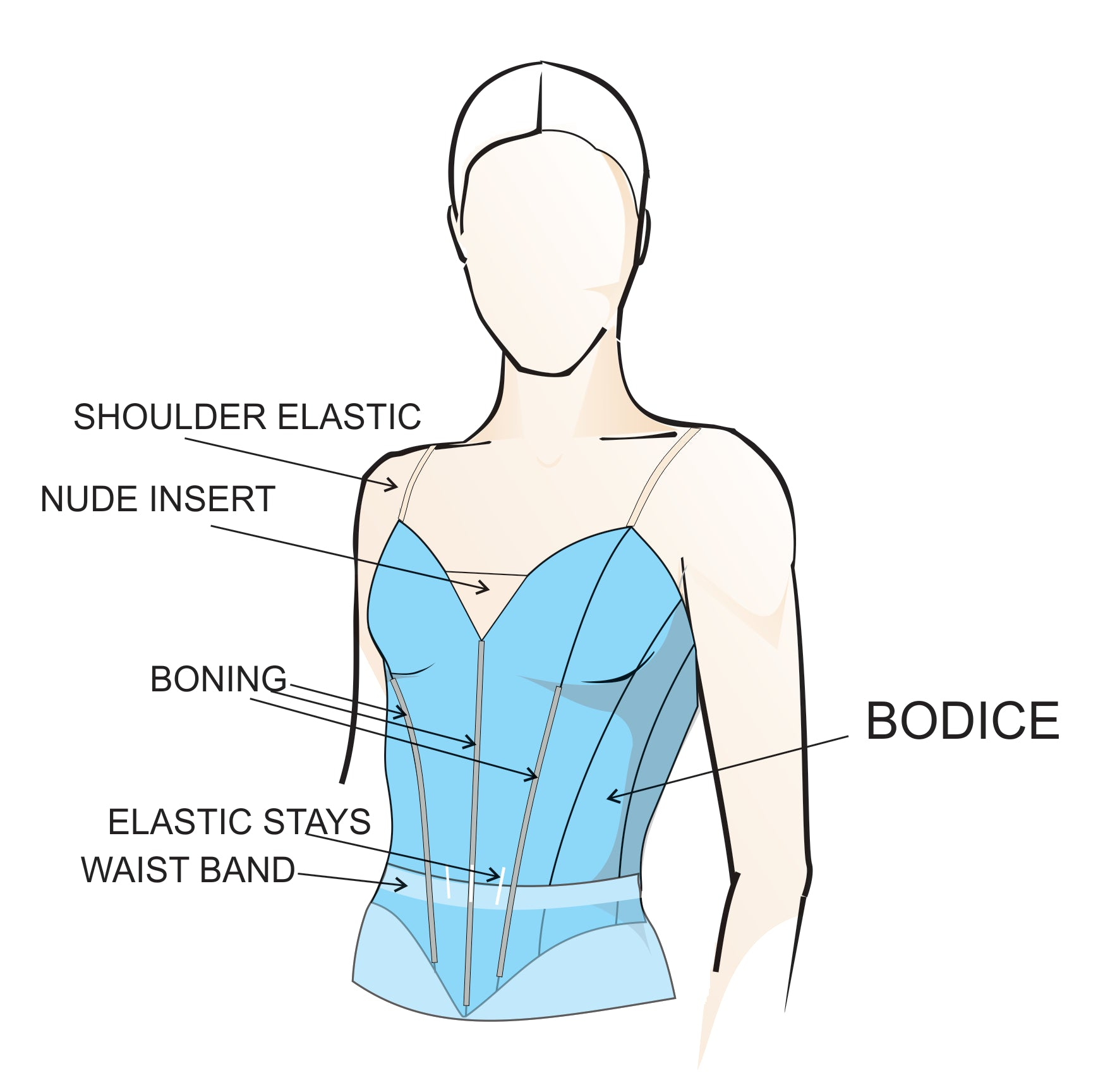 Bodice Diagram, anatomy, terminology, by Tutus that Dance