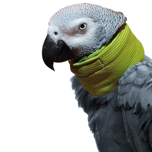 Huggle Tube Collar for Severe Parrot Feather Plucking