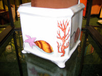 cache pot-coral and sea shells