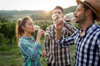 Wine Tasting Terms - All You Need To Know