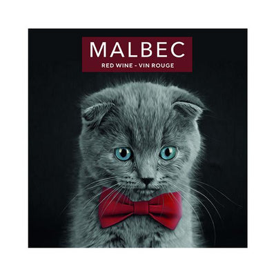 Malbec Kitten with Blue Eyes & Red Bow Tie (PK50)