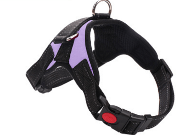 Trendy Holo S / Purple NEW All-In-One Dog Harness ®