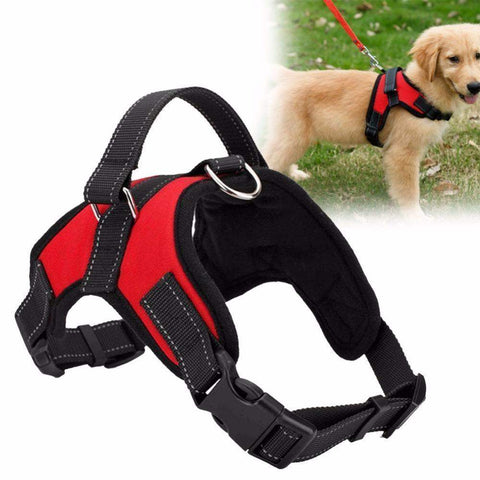 Trendy Holo S / Red NEW All-In-One Dog Harness ®
