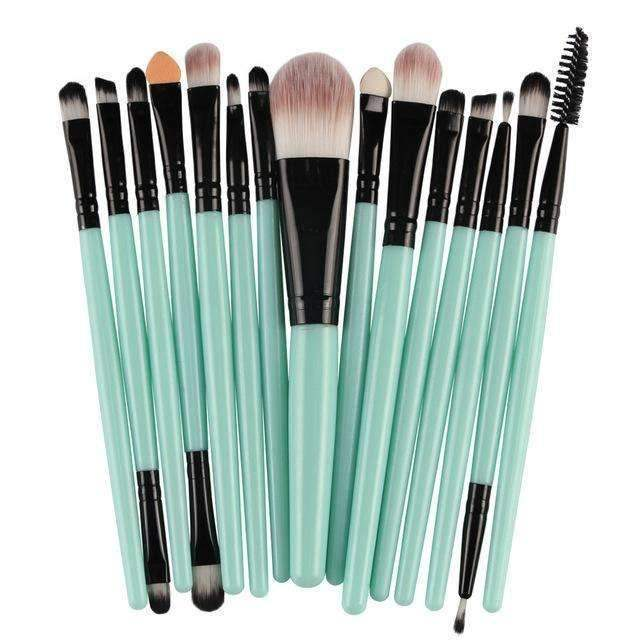 Professional Complete Set of 15 Brushes