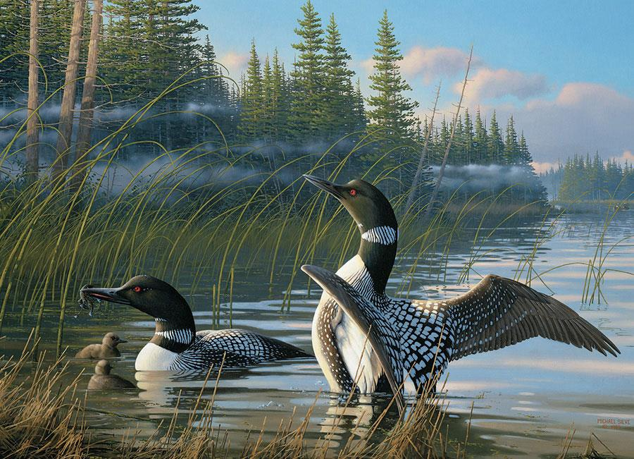 Cobble Hill Common Loons Jigsaw Puzzle (1000 Pieces)