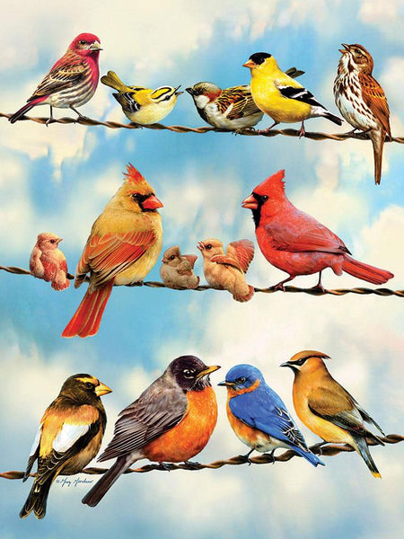 Cobble Hill Birds on a Wire Jigsaw Puzzle (500 Pieces)