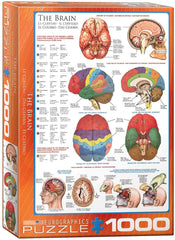 Eurographics The Brain Jigsaw Puzzle (1000 Pieces)