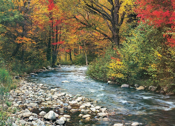 Eurographics Forest Stream Jigsaw Puzzle (1000 Pieces)