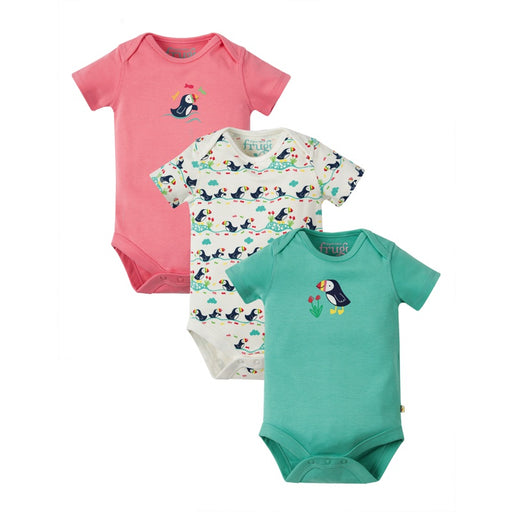FRUGI - Lot de 3 bodies manches courtes coton bio - Puffin
