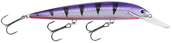 Bagley Rumble B 11 -Grape Tiger-