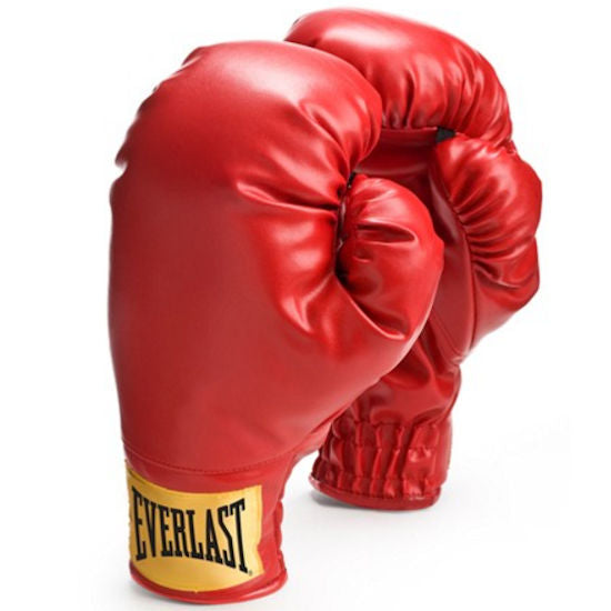 Everlast Laceless Boxing Training GLoves 14oz