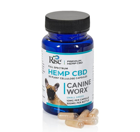 Image of CBD Canine Capsule 10mg