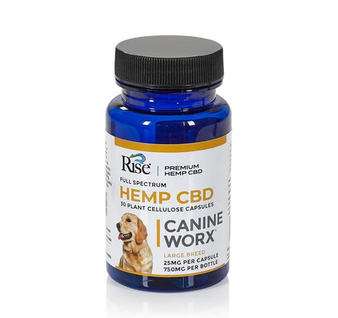 Image of CBD Canine Capsule 25mg