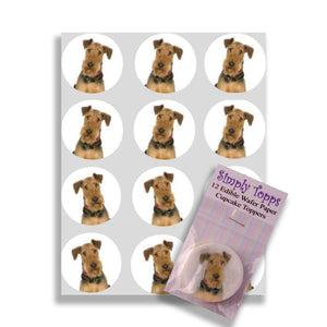 Airedale Cupcake Toppers - SimplyCakeCraft